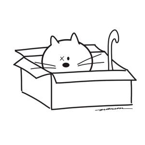 gato copy